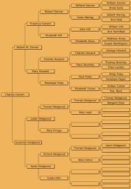aboutdarwin com family tree of darwin