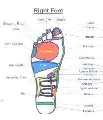 Foot Pain Map Diagram Of Bottom Foot Human Anatomy Charts