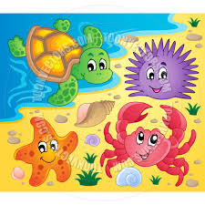 cartoon beach with shells and sea animals by clairev toon