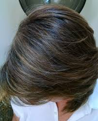 photos of gray hair with lowlights blending gray hair with highlights and lowlights hair styles