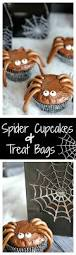 spider cupcakes and spiderweb treat bags crazy little projects