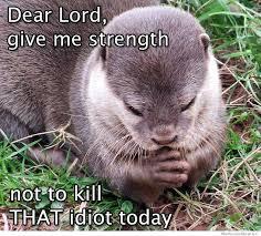 Lord Help Me Meme - you otter pray more often lol pinterest humor