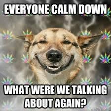 Calm Down Meme - images everyone calm down meme