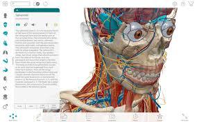 Anatomy The Human Body Human Anatomy Atlas 2017 Complete 3d Human Body On The Mac App Store