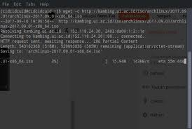 wget resume download wget command line download manager in archlinux