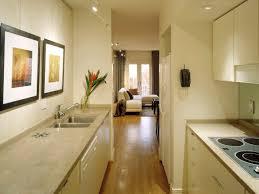 inspiring gallery kitchen design with amazing interior concept