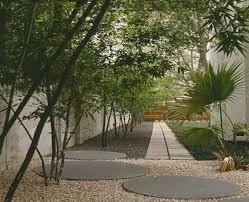 bambus fã r den balkon garten gestalten mit bambus treefunder co