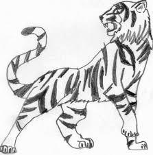easy tiger drawing tiger pencil art ozzy 25 on deviantart