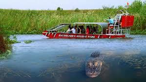 fan boat tours miami private everglades airboat tour miami expedia