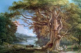 paul sandby an ancient beech tree painting an ancient beech tree