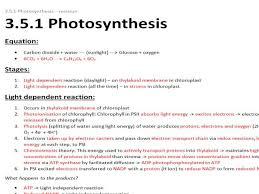 Light Independent Reactions Definition A Level Biology Resources By U0027alevelbioboss U0027 Teaching Resources