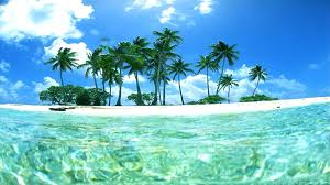tropical desktop wallpaper 1920x1080 1920x1080 764 71 kb