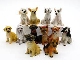 shar pei dogs shar pei dogs for sale