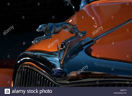 ford greyhound ornament stock photo royalty free image