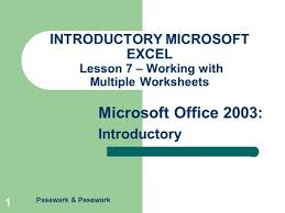 pasewark u0026 pasewark microsoft office 2003 introductory 1