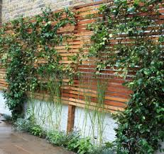 trellis garden design home outdoor decoration