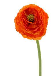 Ranunculus 26in Dark Orange Ranunculus Artificial Silk Flowers Permanent Bouquet