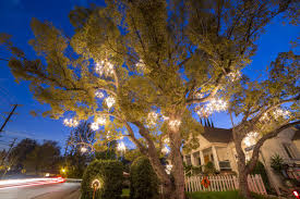 tree chandelier the story of the magical chandelier tree of silver lake curbed la