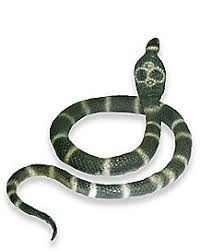 jumping snake animated decoration spirithalloween com