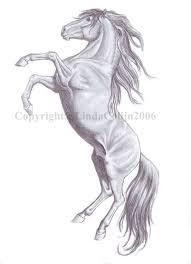2971 best horse art 3 images on pinterest western art cowboy