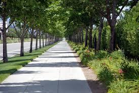 commercial maintenance of turf shrubs and trees fresno clovis ca