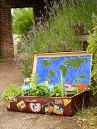 how to plant an herb container garden hgtv