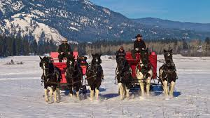 cozy up for a sleigh ride in idaho u0027s winter wonderland visit idaho