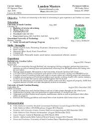examples of illustrative essay free college student resume