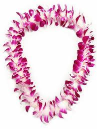 hawaiian leis s day leis fresh hawaiian leis purple