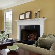 Fireplace Electric Insert Living Room Realistic Electric Fireplace Inserts Electric