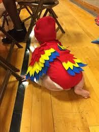 Baby Parrot Costumes Halloween Diy Parrot Costume Jaydens Birthday Parrot