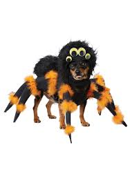 Pet Cat Halloween Costumes Spider Pup Costume