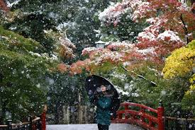 november tokyo snow falls in november in tokyo for first time in 54 years the