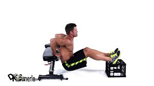 bench tricep bench best bench press ideas workout tricep curls