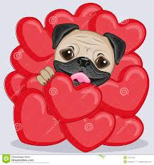 pug dog in hearts stock vector image 47911528
