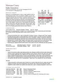 Marketing Professional Resume Sample Marketing Director Resume Old Version Old Version Old