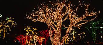 american lighting seasonal linear lighting
