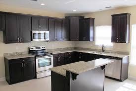 Design Cabinet Kitchen Kitchen Cabinet Design L Shape Caruba Info