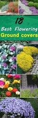 39 best images about gardening on pinterest gardens old fences