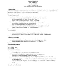 Resume Customer Service Skills Examples by What To Put In A Resume Profile