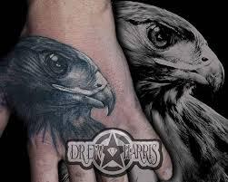 hawk tattoo added onto a wildlife sleeve drew harris is working on