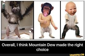 Baby Monkey Meme - this needs its own thread puppy monkey baby page 8