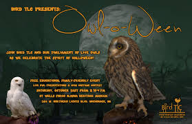 spirit halloween fargo have some spooky fun this october welcome to alaska