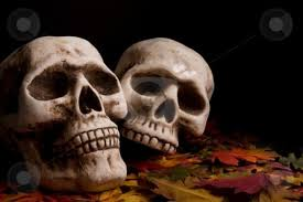 Halloween Decor Clearance Halloween Skulls Cute Halloween Decorating Ideas Halloween