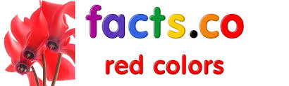 Red Colour Shades Shades Of Red Color Names All Shades Of Red Color