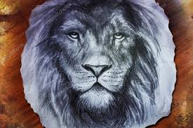 drawing of a lion head with a majestically peaceful expression on