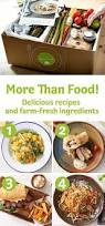 best 25 healthy meals delivered ideas on pinterest meals