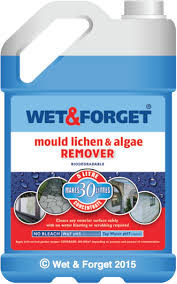 How To Remove Lichen From Patio Wet U0026 Forget Uk Moss Mould Lichen U0026 Algae Remover