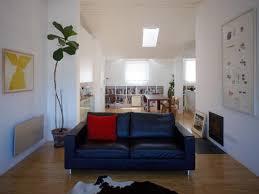 small living room two sofas interior design