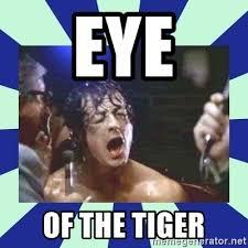 Eye Of The Tiger Meme - eye of the tiger rocky balboa meme generator